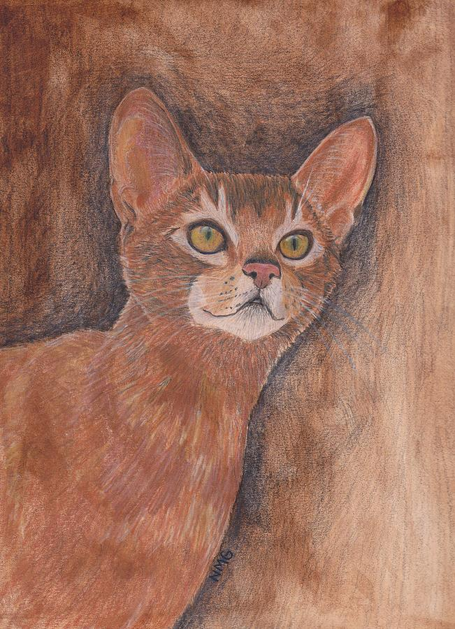 Abyssinian Painting - Abyssinian Cat by Nicole Grattan