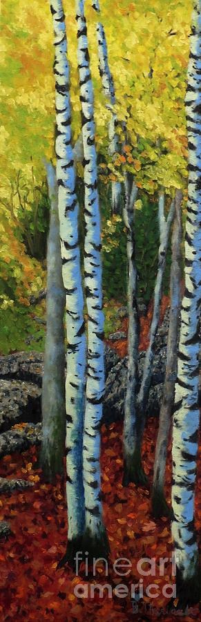 Acadian Aspens by Beverly Theriault