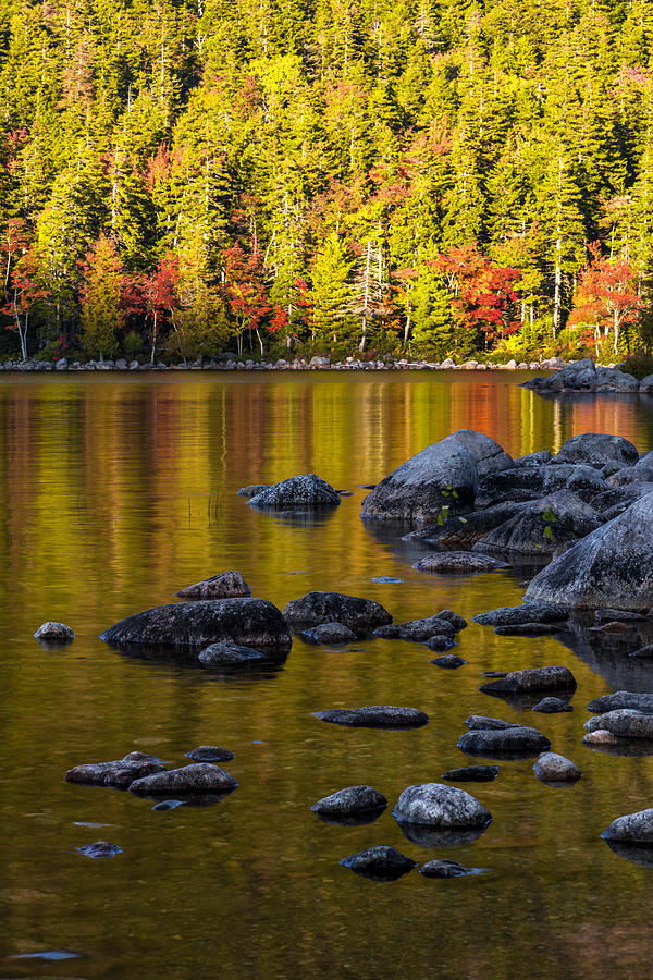 Acadia Photograph - Acadian Glow by Chad Dutson