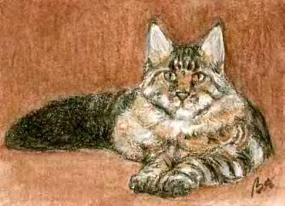 Aceo Maine Coon Cat Painting by Bruce Lennon