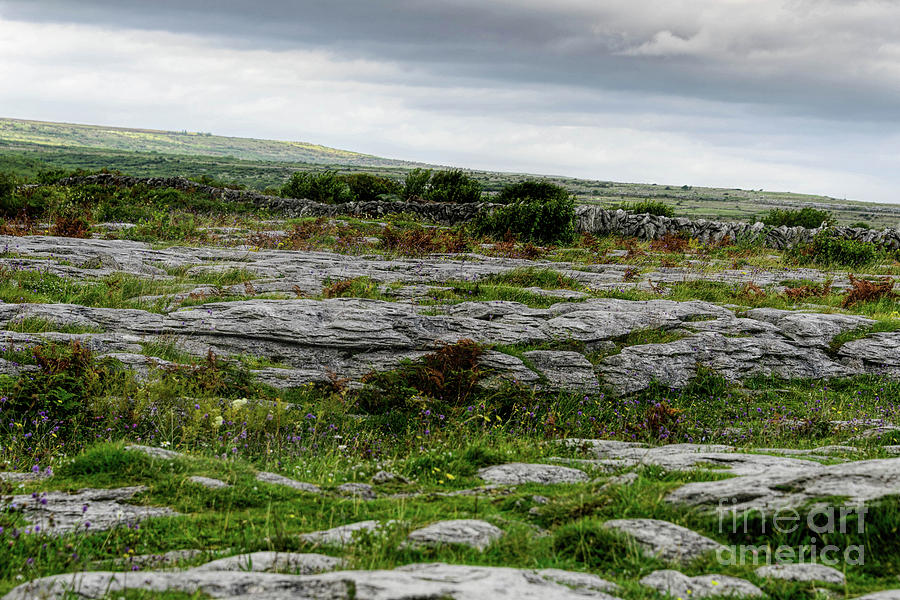 Across the Burren by Elvis Vaughn