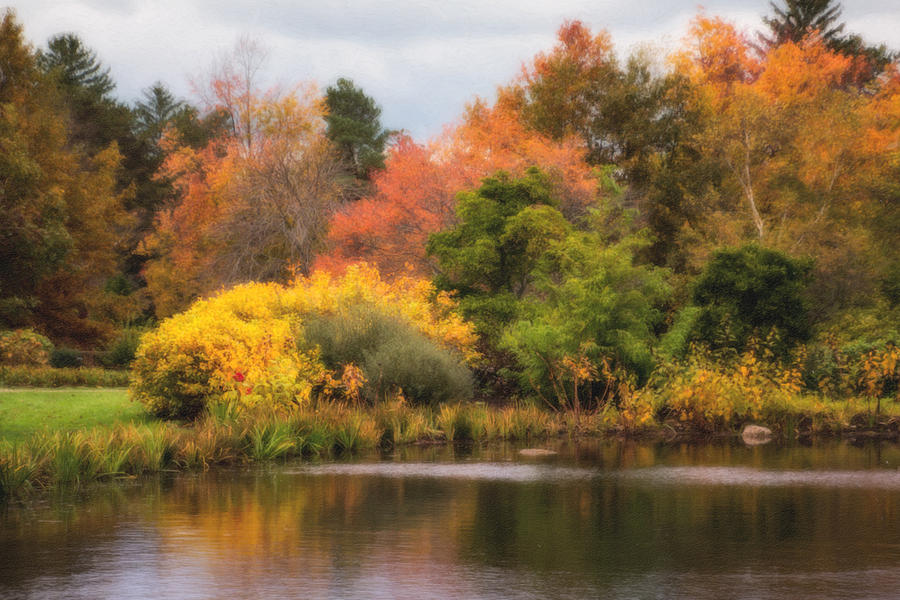Nature Photograph - Across the Pond by Tom Mc Nemar