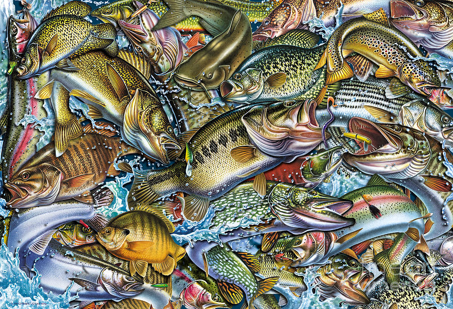 Action Fish Collage Painting By Jq Licensing