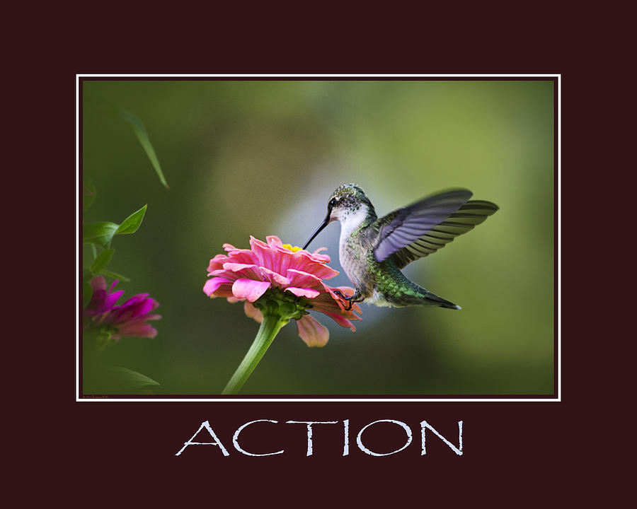 Action Photograph - Action Inspirational Motivational Poster Art by Christina Rollo