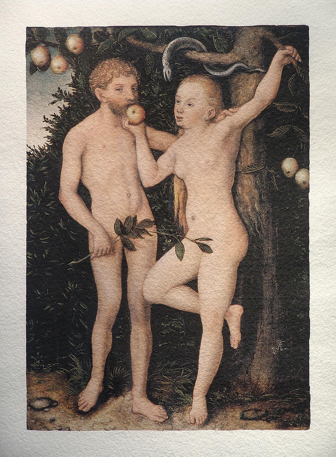 Adam And Eve Painting - Adam And Eve by Cranach Lucas the Elder