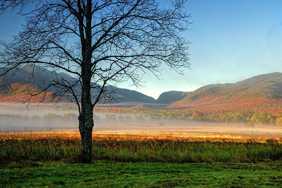 Adirondack Mountains Photograph - Adirondack Landscape 1 by Tony Beaver
