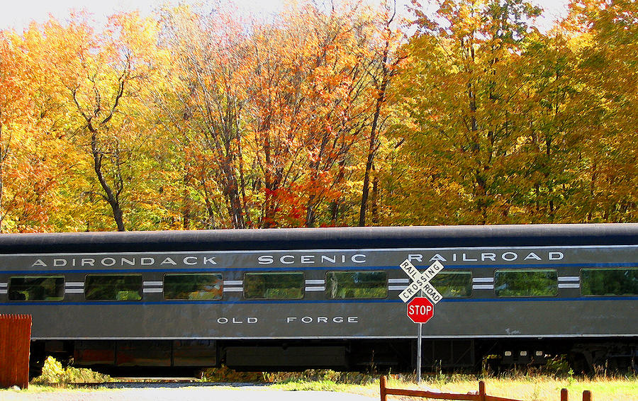 Trains Photograph - Adirondack Scenic Railroad by Steve Ohlsen
