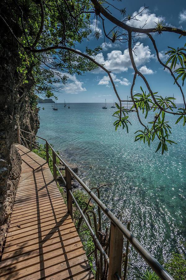 Admiralty Bay by Gary Felton