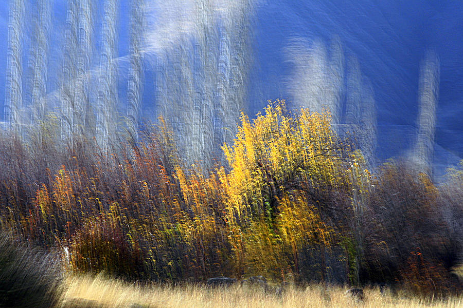 Autumn Photograph - Adour by Robert Shahbazi