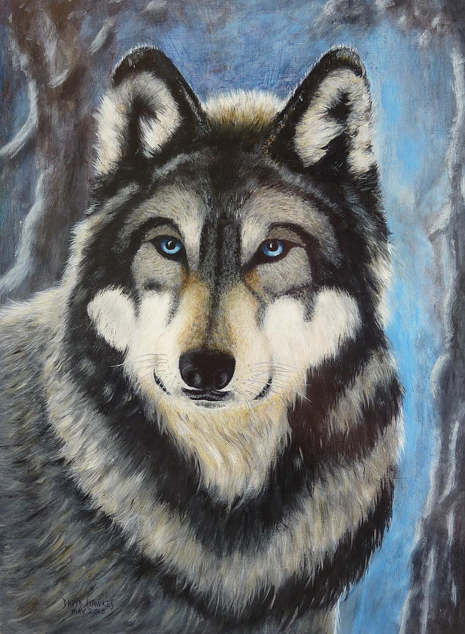 Wolf Painting - Adult Grey Wolf by David Hawkes