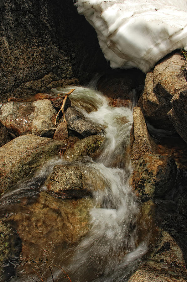 Waterfall Photograph - Adventures Of Stickman by Donna Blackhall