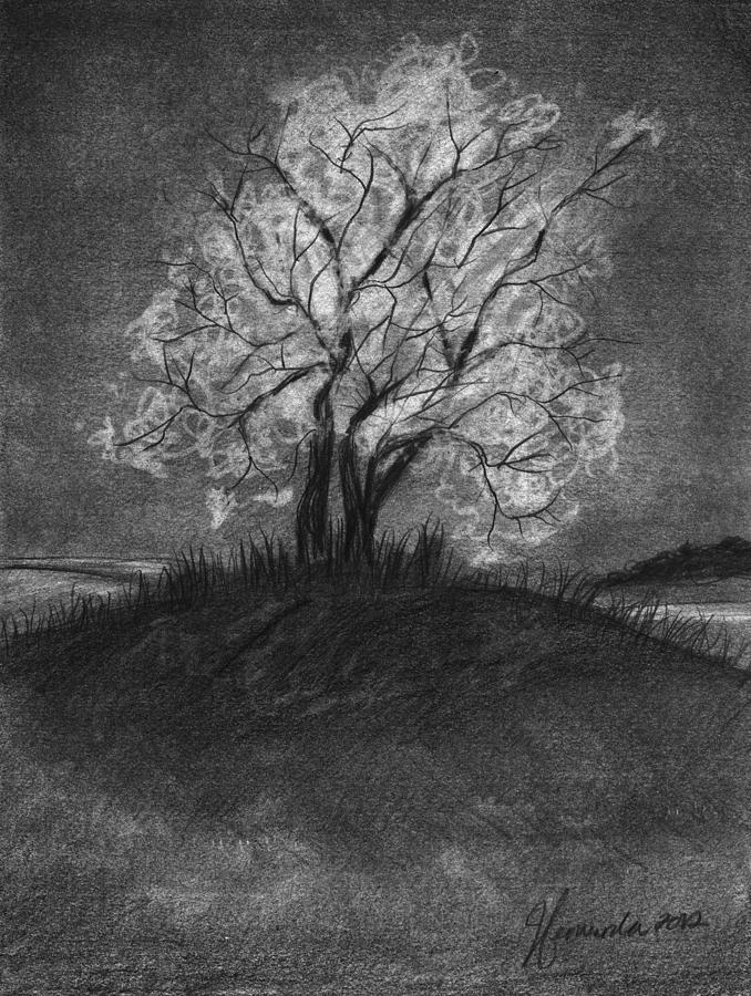 Tree Drawing - Advice From A Tree by J Ferwerda