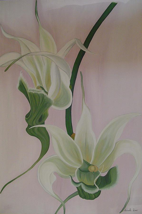 Flower Painting - Aeranthes Peyrot Orchide by Marinella Owens