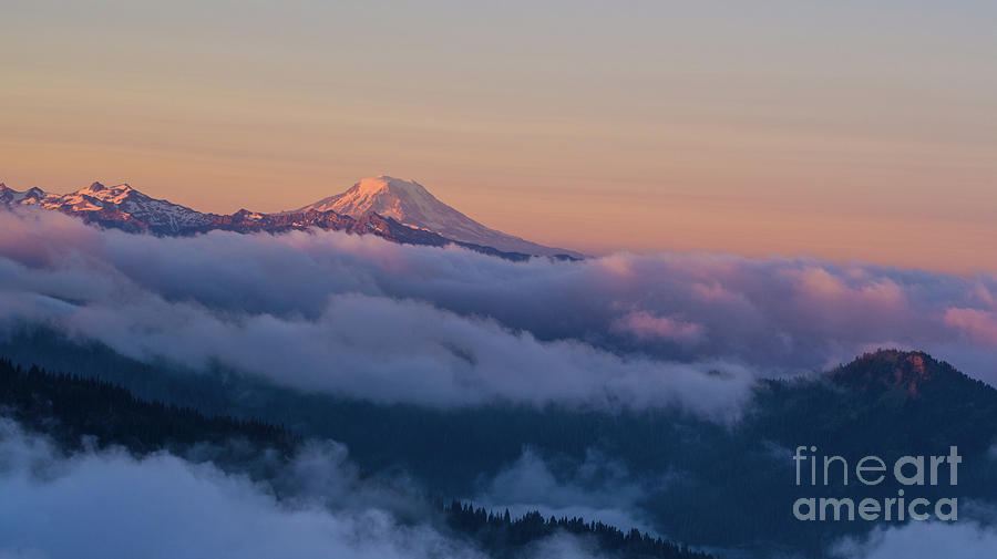 Adams Photograph - Aerial Mount Adams Above The Clouds At Sunrise by Mike Reid