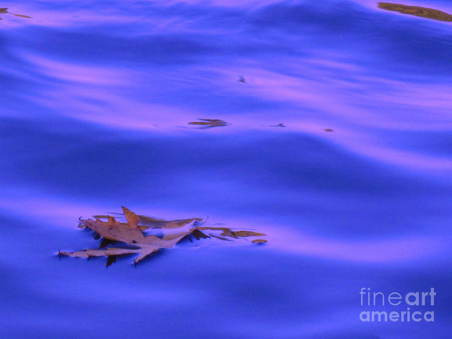 Abstract Relief - Afloat by Sybil Staples