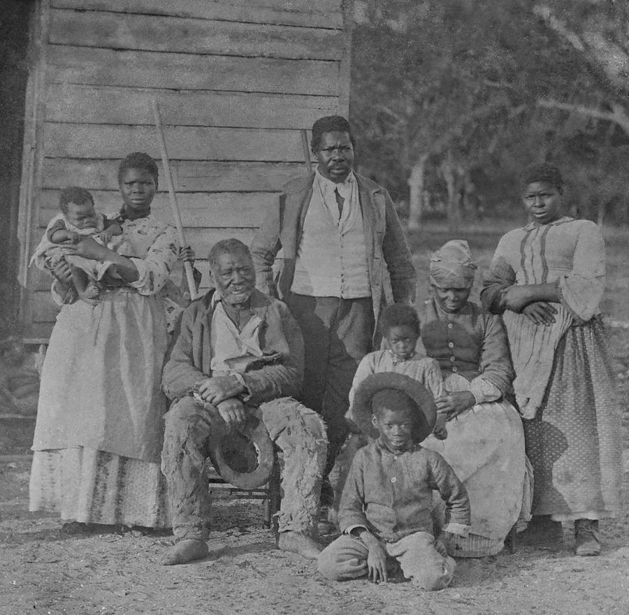 african american slave family photograph by everett