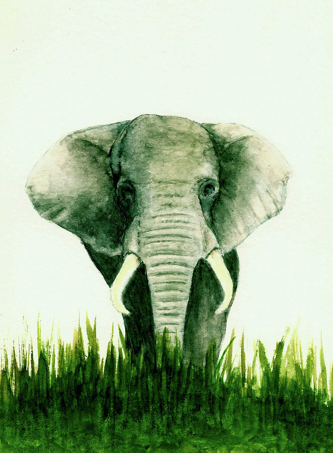 Animals Painting - African Elephant by Michael Vigliotti