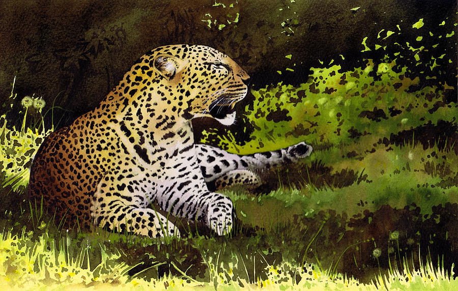 Leopard Painting - African Leopard by Paul Dene Marlor