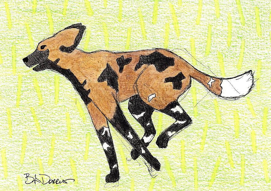 African Painted Dog by Brittany Dorris