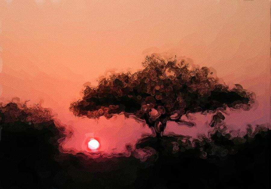 Digital Photography Photograph - African Sunset by David Lane