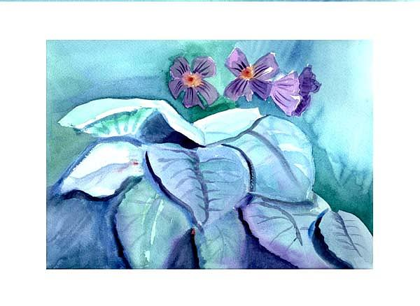 African Violets Painting - African Violets by Janet Doggett