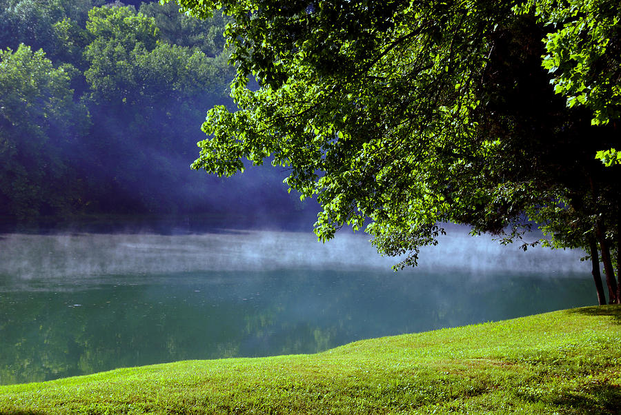 Fog Photograph - After A Warm Summer Rain by Susanne Van Hulst