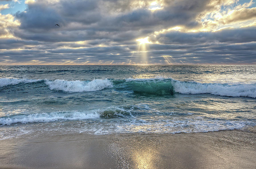 Carlsbad Photograph - After The Storm by Ann Patterson