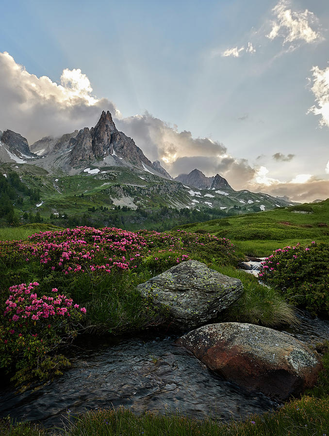 River Photograph - Afternoon Light In The Alps by Jon Glaser