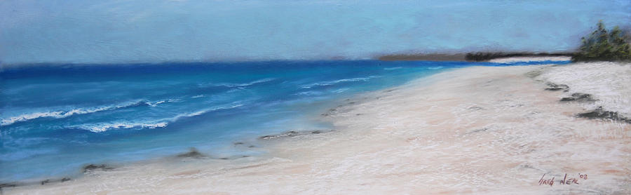 Landscape Pastel - Afternoon On Honeymoon Island  by Greg Neal