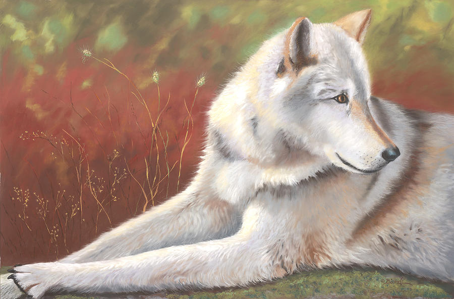 Wolf Painting - Afternoon Repose by Janet Biondi