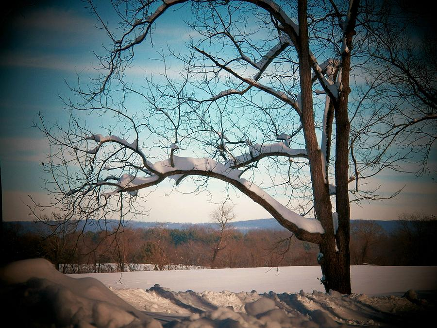 Virginia Photograph - Afterr The Blizzard by Joyce Kimble Smith