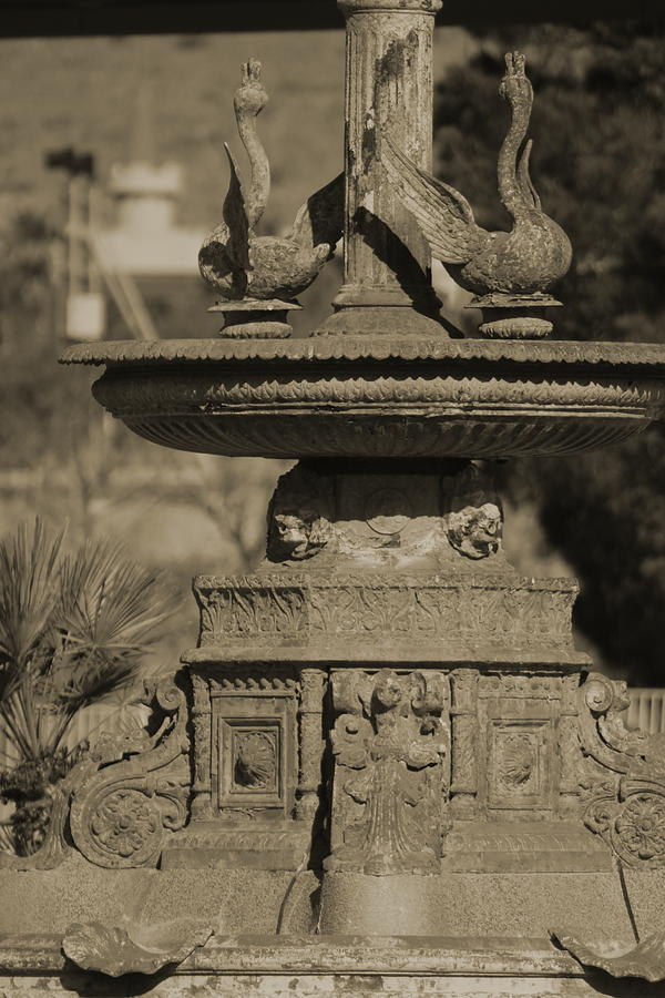 Aged Photograph - Aged and Worn Swan Statues on Rustic Cast Fountain by Colleen Cornelius
