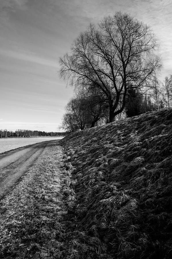 Matti Ollikainen Photograph - Ages by Matti Ollikainen