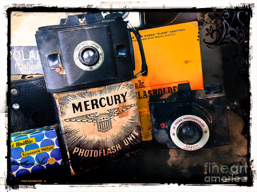 Cameras Photograph - Agfa And Ansco by Steven Digman