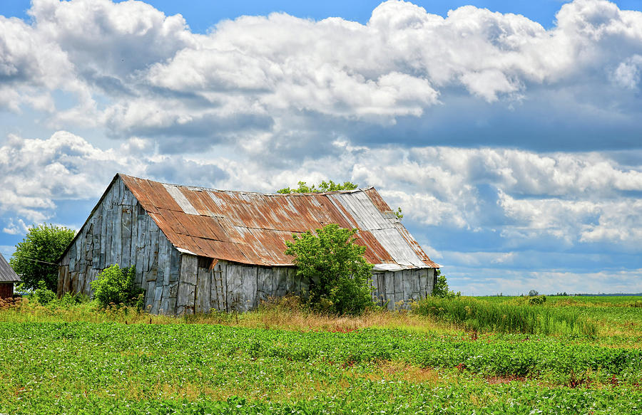 Barn Photograph - Agricultural Landscape by Natidu Photography