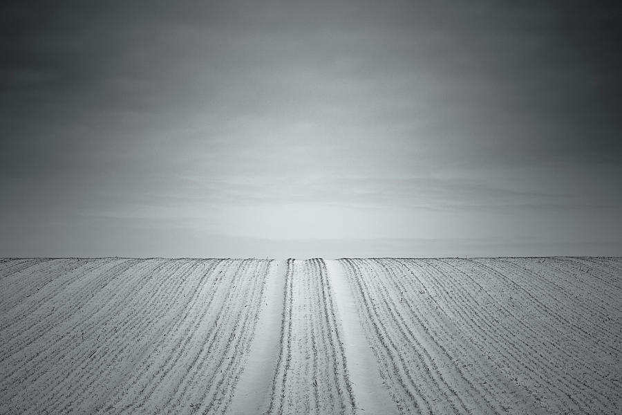 Minimalism Photograph - Agriculture by Holger Nimtz