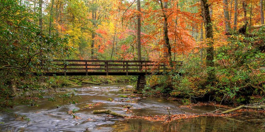 Abrams Creek Photograph - Ah Abrams by Kristina Plaas