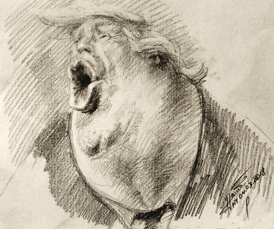 Donald Trump Drawing - Trump by Ylli Haruni