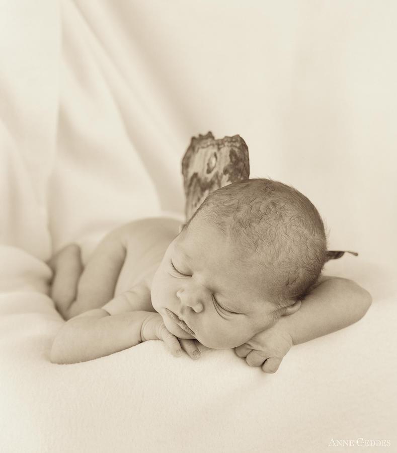 Sepia Photograph - Aimee as a Fairy by Anne Geddes