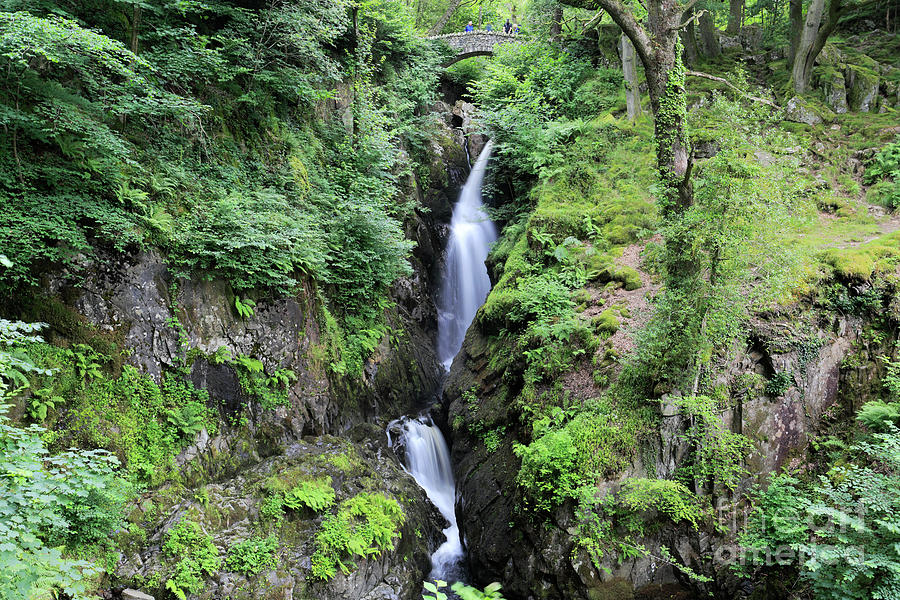 Aira Force Photograph - Aira Force Waterfall, Aira Beck, Ullswater, Lake District by Dave Porter