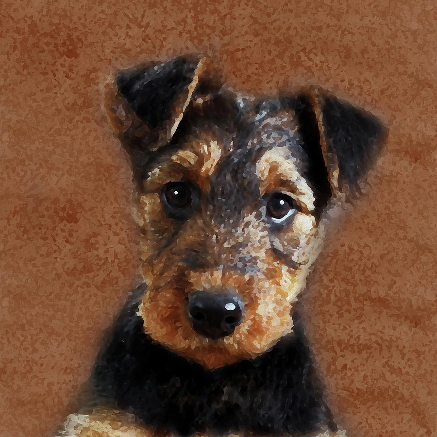 airedale terrier puppy digital art by creativemotions