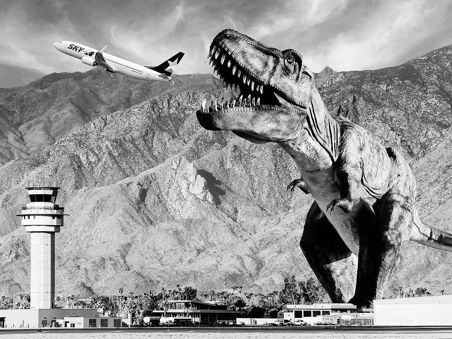 Dinosaur Photograph - Airplane Food Black And White by William Dey