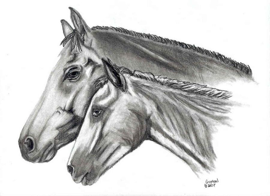 Charcoal Drawing - Aj And Candy by Crystal Suppes
