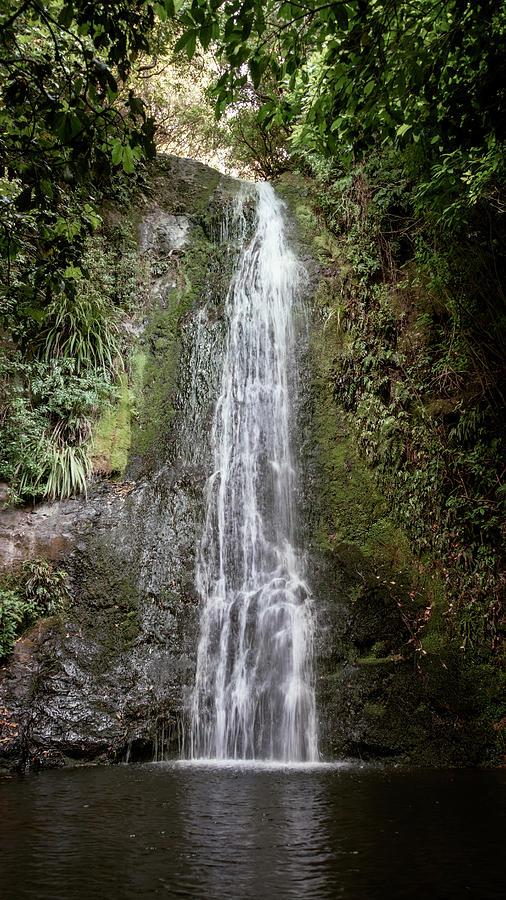 Banks Peninsula Waterfall New Zealand Photograph