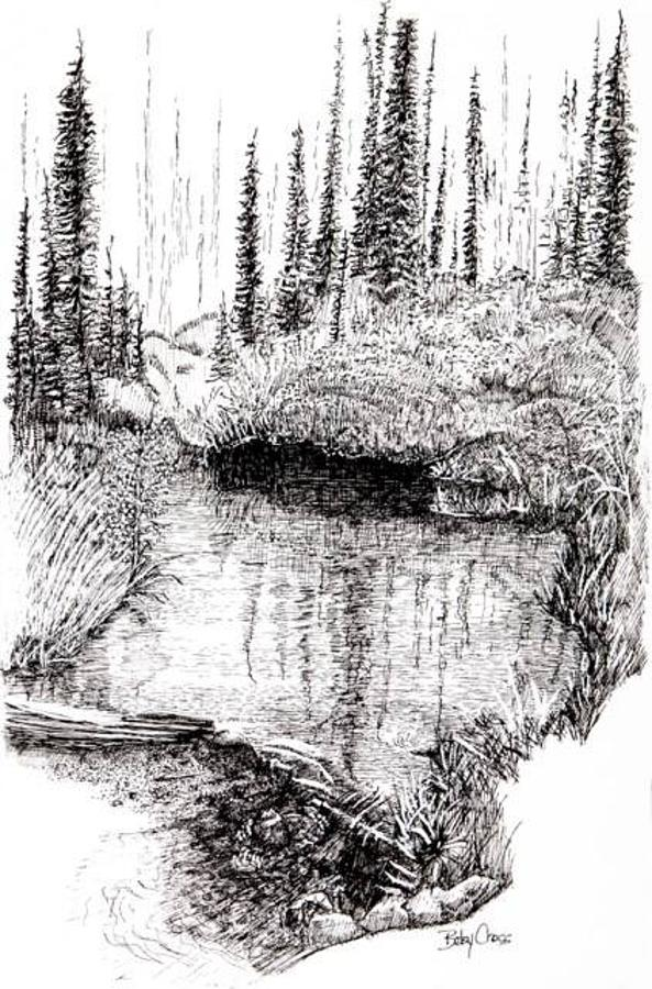 Alaska Pond by Betsy Carlson Cross