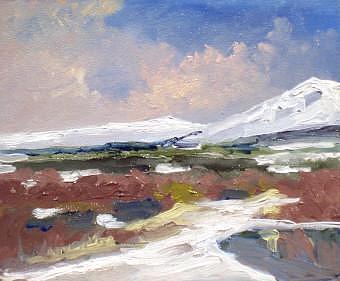 Alaska Tundra Painting by Dalas  Klein