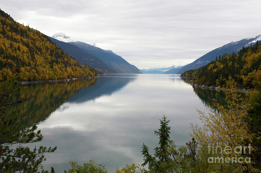 Alaskan Autumn on the Fjords by Julian Wicksteed