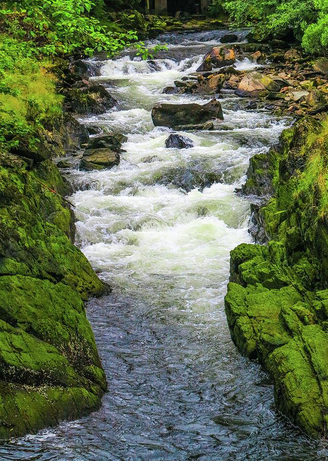 Seascape Photograph - Alaskan Creek by Jason Brooks