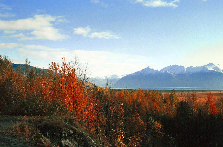 Alaskan Fall Photograph by Brigid Nelson