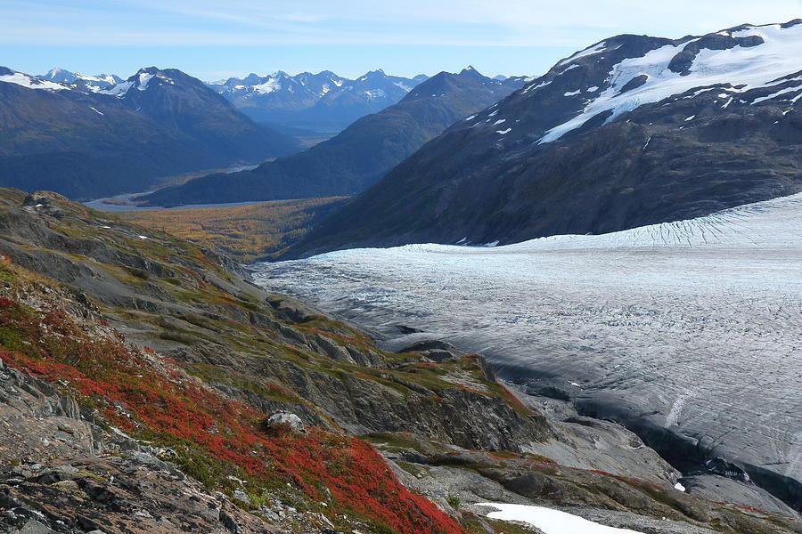 Alaska's Exit Glacier by Steve Wolfe